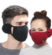 Ear protection mask 2-in-1