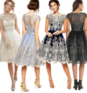Retro mesh dress
