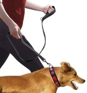 Pet Double Handle Pull Leash