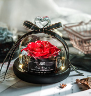 Dried Flowers The Beauty And Beast Eternal Real Rose Home Decor With LED in Glass