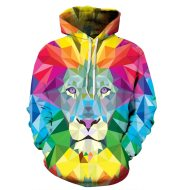 3D color lion hooded sweater