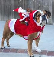 Dog Christmas Clothes Santa Claus Riding Deer