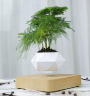 Magnetic Suspension Polygon Flower Pot Suspended Wood Grain Potted Plant Bonsai