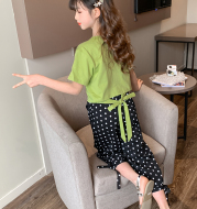 Girls summer mosquito pants suit
