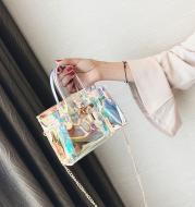 Transparent beach platinum bag
