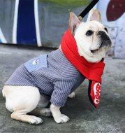 Contrast pocket embroidered dog T-shirt