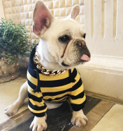 Dog striped hooded casual clothes