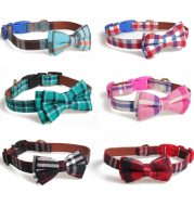 Bowknot traction collar