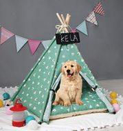 Pet tent kennel