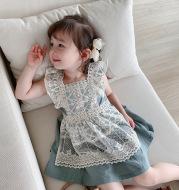Girl's lace dress baby princess dress