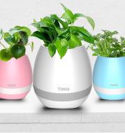 Touch-sensitive music vase desktop audio