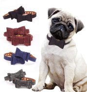 British bow pet collar