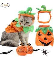 Halloween Pet Pumpkin Costume