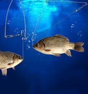 Fishing Artifact Automatic Hook, Magic Hook, Ejection Hook, Double Hook
