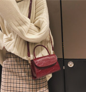 Mini Embossed Crocodile Pattern Women's Straddle Bag