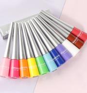 Colored Eyeliner Matte Quick-Dry Liquid Eyeliner