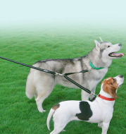 Double-Headed One-To-Two Nylon Dog Leash Reflective