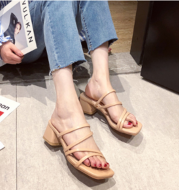 Outer Wear Thick Heel Sandals Female Fairy Wind Mid-heel High Heel Sandals and Slippers