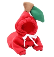 Chihuahua With Plush Pet Clothes For Autumn And Winter