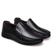 Fancy Men's Casual Shoe Cover Dad