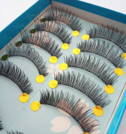 Ten Pairs Of New Fashion and Simple False Eyelashes