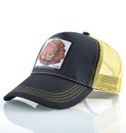 Mesh Lion Pattern Colorblock Baseball Cap