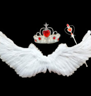 Feather Wings Factory Direct Sales New Swallow-Shaped Angel Feather Wings Angel Wings Wings Props Stage Props
