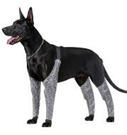 Doughton's New Doggie Outdoor Four-Legged Pants