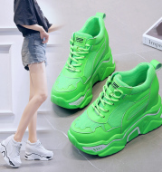 Daddy Shoes Female Ins Tide Breathable Inner Increase Thick Bottom Mesh Sports Casual Shoes