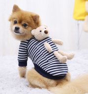 Cat Dog Pet Clothes for Small Dog Cute Sweater Spring Cat Cute Teddy Bear