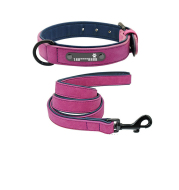 Dog Collar Lettering Anti-Lost Medium Dog Large Dog Small Dog Dog Collar Custom Pet