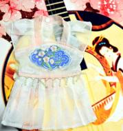 Teddy Cat Bichon Small Dog Princess Dress