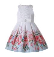 Pettigirl Flower Little Girl Party Dresses Girly Valentine