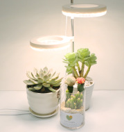 Home Office Desk Flower And Plant Growth Lamp