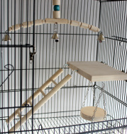 Tiger Skin Peony Xuan Little Sun Monk Gnaws And Relieves Boredom Swing Ladder Springboard Cage Toy Bell Wood Color
