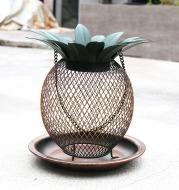 Pineapple Outdoor Hanging Hummingbird Bird Feeder