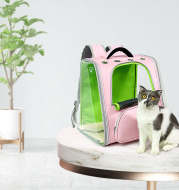 Portable Transparent Space Capsule Cat Bag