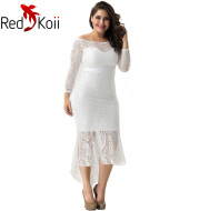 Long Sleeve Lace Embroidery Dress