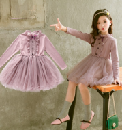 Girls' new spring long-sleeved princess mesh skirt knit lace skirt