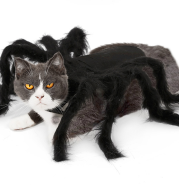 Hot Pet Spider Clothes Puppy Cat Terror Simulation Plush Spider Transforms Party Dress Up
