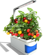Multifunctional Intelligent Plant Growth Light