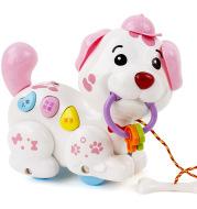 Dog early education haul toy