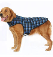 Large dog clothes