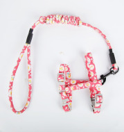 Walking the cat rope pet chest strap