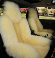 Car cushion winter