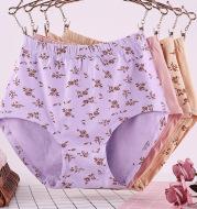 Large underwear