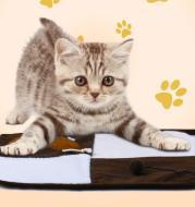 Pet pad sisal pad cat scratch pad funny cat toy