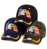 Eagle embroidery baseball cap
