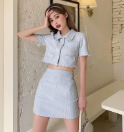 Western style small fragrance skirt suit