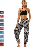 Belly Dance Yoga Pants